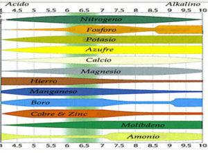 Intervalos de pH donde se asimila cada nutriente de manera óptima