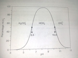 curva carbono
