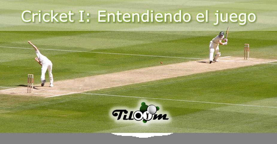 Entender el juago del cricket