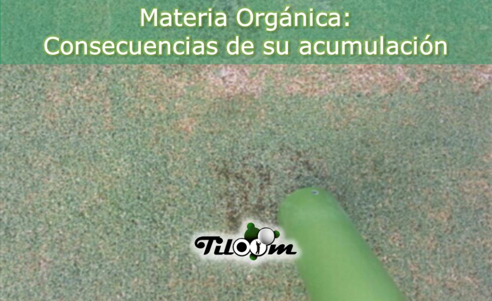 Acumulación materia orgánica