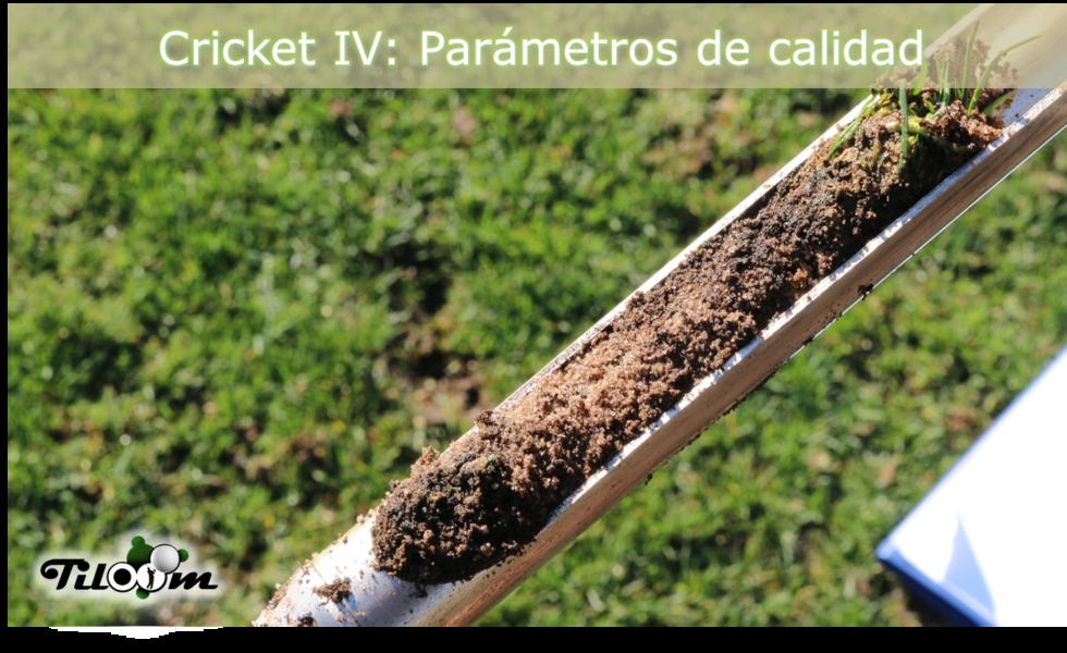 La calidad de los campos de cricket