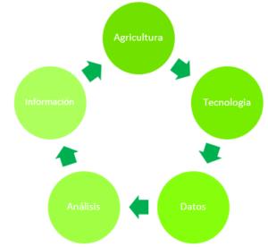 Retroalimentación de la información en la agricultura.