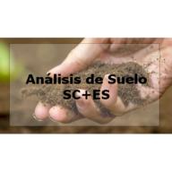 SC+ES · Suelo estándar + extracto saturado