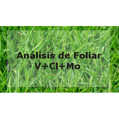 Logo análisis foliar