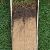 Ejemplo de muestra