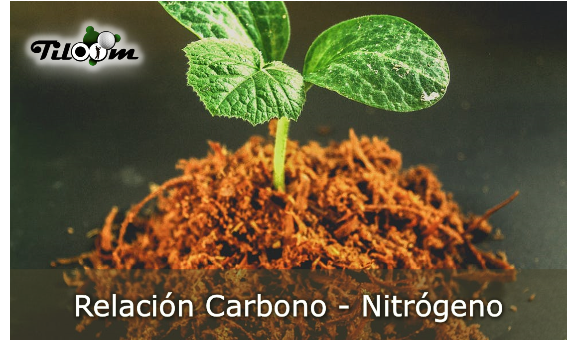 Portada Relación carbono nitrógeno