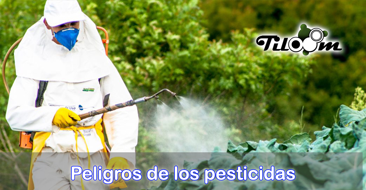 Portada de la entrada de blog Peligros de los pesticidas